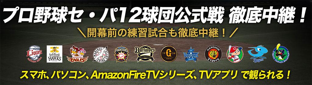 広島カープ戦を含む全12球団のネット中継をスカパーオンデマンドで視聴可能